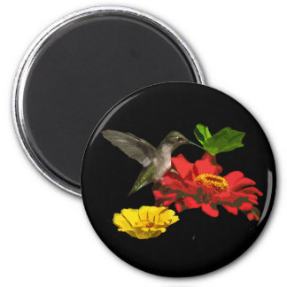 Hummingbird and Zinnias Magnet