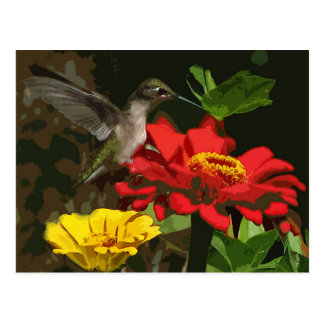 Hummingbird and Zinnias Postcard