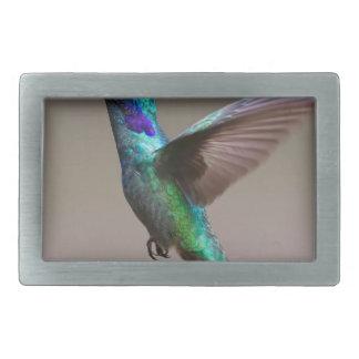 Hummingbird Belt Buckle