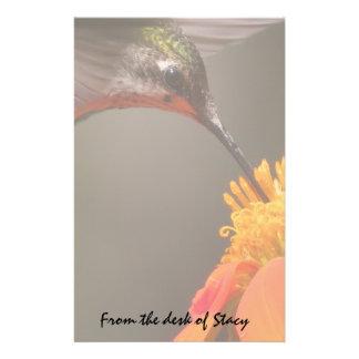 Hummingbird Bird Animal Wildlife Floral Sunflower Customized Stationery