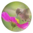 Hummingbird Bird Animal Wildlife Flower Plate