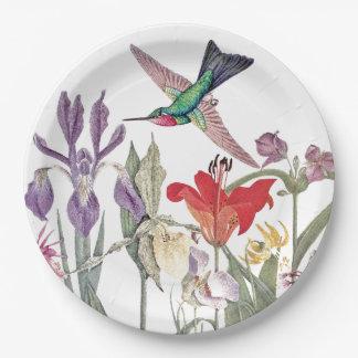 Hummingbird Birds Animals Flowers Paper Plates