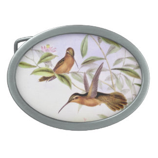 Hummingbird Birds Flowers Floral Wildlife Animals Oval Belt Buckles