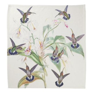 Hummingbird Birds Wildlife Animal Flowers Bandana