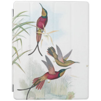 Hummingbird Birds Wildlife Animals Ipad Cover