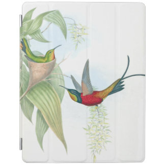 Hummingbird Birds Wildlife Animals Nest Ipad Cover