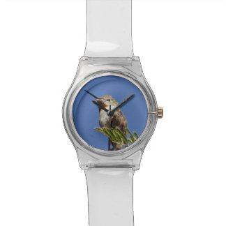 Hummingbird by SnapDaddy Watch