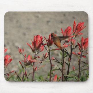 Hummingbird cardinal flowers mouse pad
