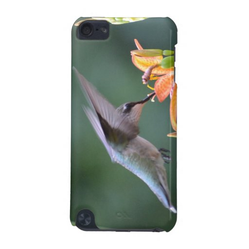 Hummingbird iPod Touch (5th Generation) Cases