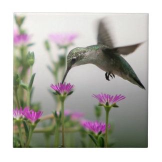 Hummingbird Ceramic Tile