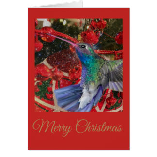 Hummingbird Christmas Card