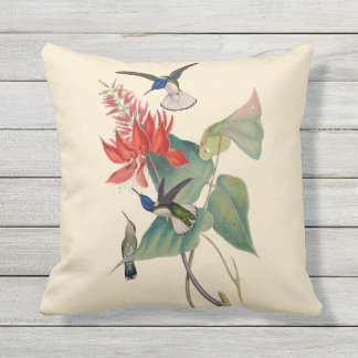 Hummingbird Coral Bean Outdoor Throw Pillow 16X16