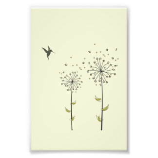 Hummingbird & Dandelion Photo Print