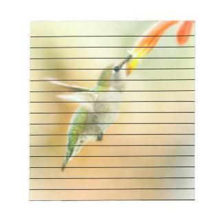 Hummingbird early morning flight notepad