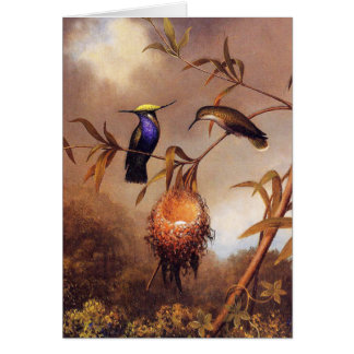 Hummingbird Family Note Card