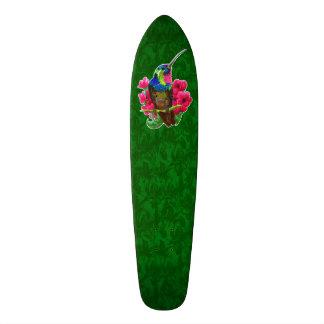 Hummingbird hand drawing bright illustration. Neon Skate Board