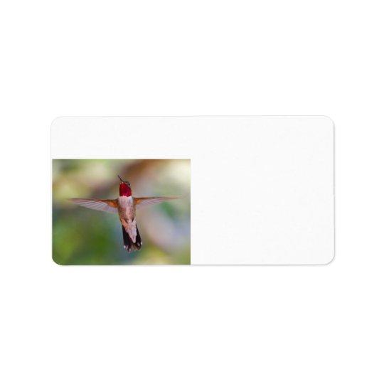 hummingbird in flight address label