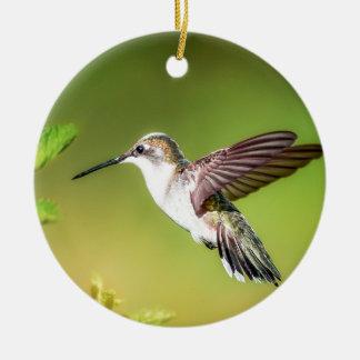 Hummingbird in flight ceramic ornament
