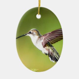 Hummingbird in flight ceramic oval decoration