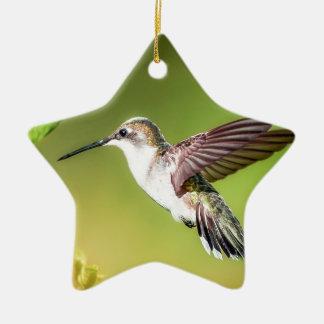 Hummingbird in flight ceramic star decoration