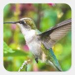 Hummingbird in Flight Square Sticker