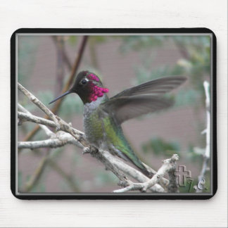 Hummingbird In My Backyard. Mouse Pad