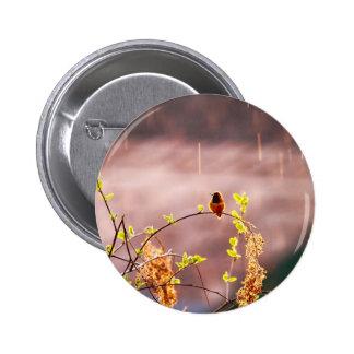 Hummingbird in Rain Shower Button