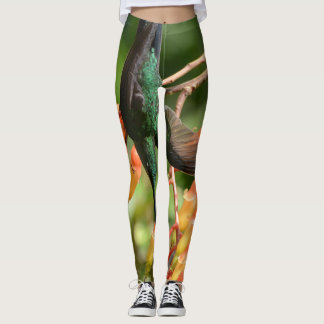 Hummingbird lover leggings