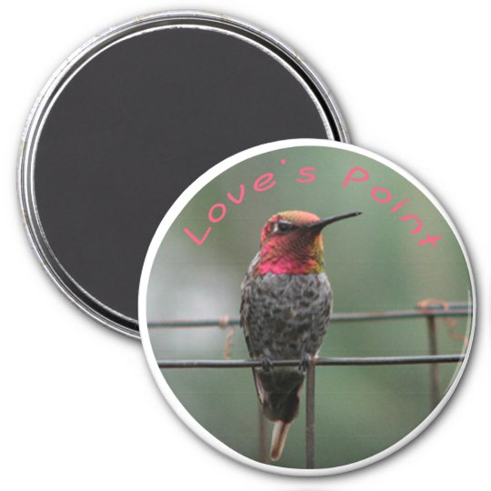 Hummingbird magnet Love's Point caption