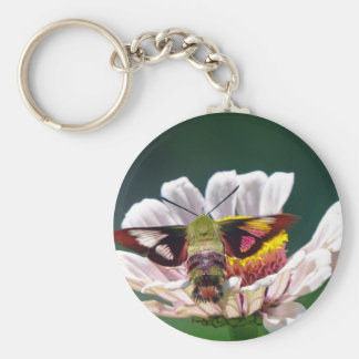 Hummingbird Moth Key Ring