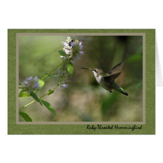 Hummingbird note card