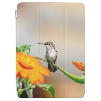 Hummingbird on a flowering plant iPad pro cover