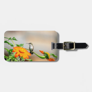 Hummingbird on a flowering plant luggage tag
