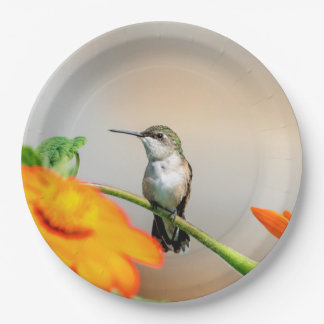 Hummingbird on a flowering plant paper plate