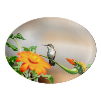 Hummingbird on a flowering plant porcelain serving platter