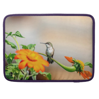 Hummingbird on a flowering plant sleeve for MacBook pro