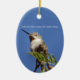 Hummingbird on Branch by SnapDaddy Ceramic Oval Decoration