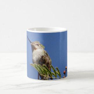 Hummingbird on Branch by SnapDaddy Coffee Mug
