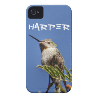 Hummingbird on Branch by SnapDaddy iPhone 4 Cases