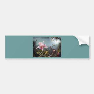 Hummingbird orchid flower tropical forest painting bumper sticker