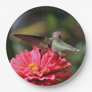 Hummingbird, Paper Plates. Paper Plate