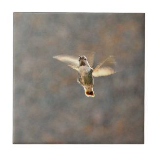 Hummingbird photo tile! small square tile