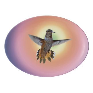 HUMMINGBIRD PORCELAIN SERVING PLATTER