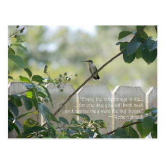 "Hummingbird Postcard with ""Little Things"" Quote"