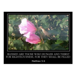 Hummingbird & Rose of Sharon Scripture Post Card