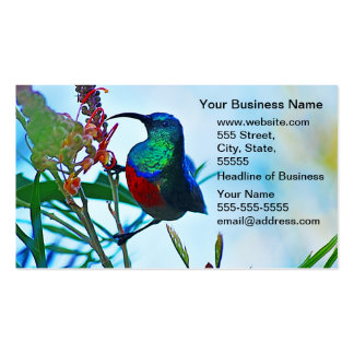 Hummingbird ruby throated business card template