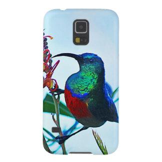 Hummingbird ruby throated galaxy s5 cover