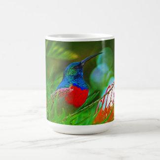 Hummingbird ruby throated coffee mug