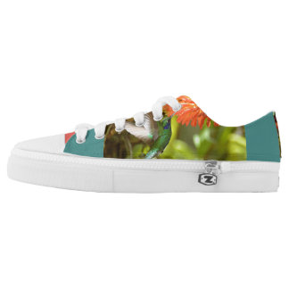 Hummingbird shoes