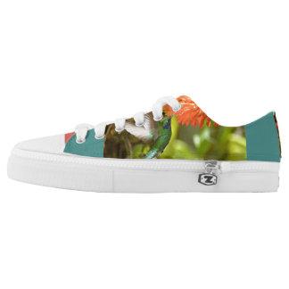 Hummingbird shoes printed shoes